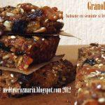 Granola bars – batoane cu seminte si fructe uscate [*vegan]