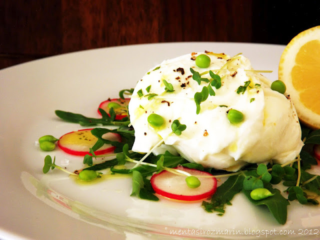 salate-vegetariene-de-vara-mozzarella-menta