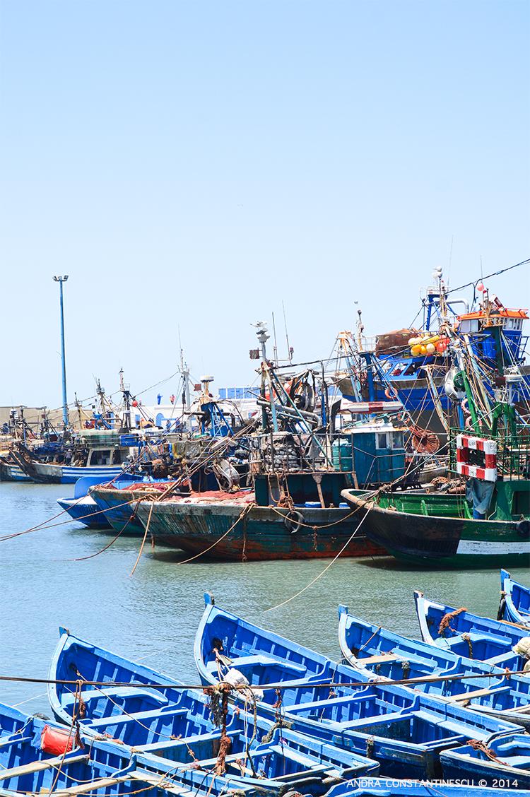 maroc-essaouira-vacanta