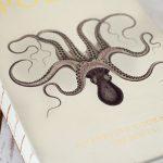 Libraria Culinara: Polpo – A Venetian Cookbook (of sorts)